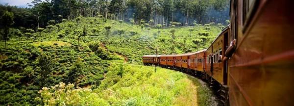 Sri Lanka treinreis
