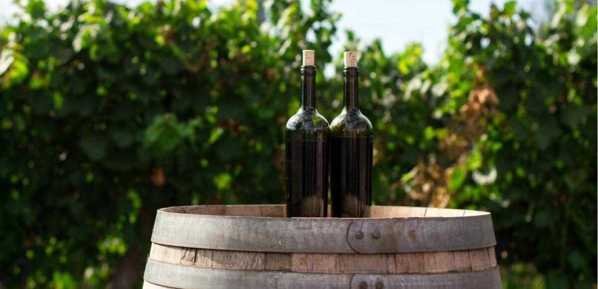 wijnrondreis